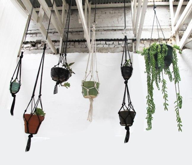 hanging-garden